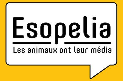 Esopelia