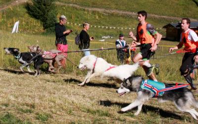 DOSSIER SPECIAL TROPHEE DES MONTAGNES: Ils sont venus courir avec leur chien